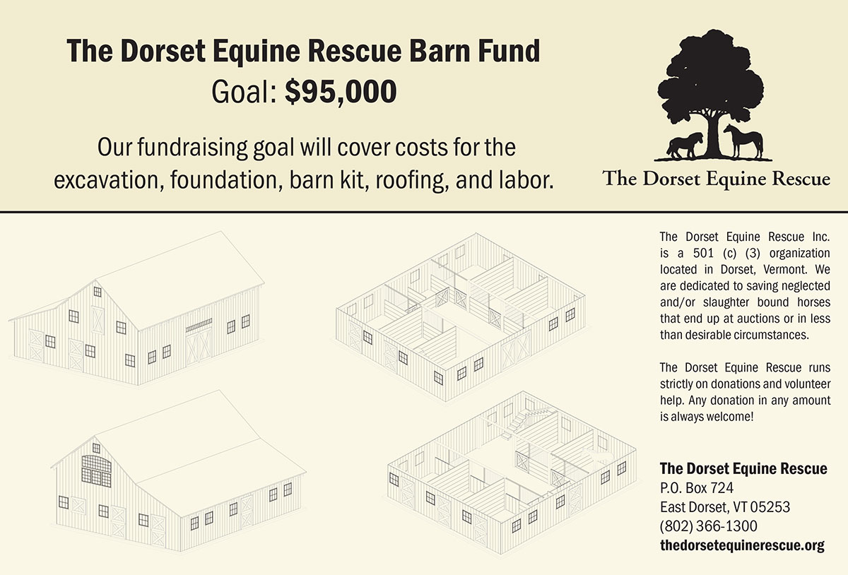 Dorset Equine Rescue Barn Fund